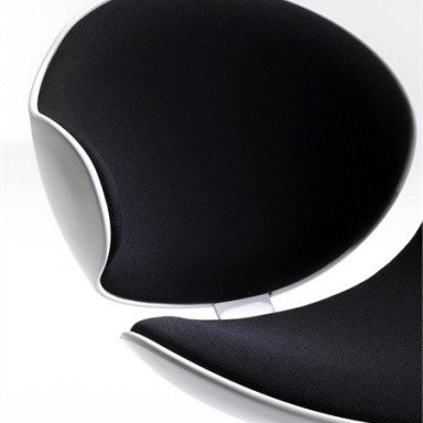 The Bubble Chair
