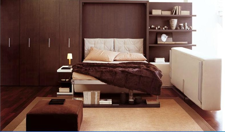 A pull out sofa clei luxury furniture mr for Murphy beds san francisco