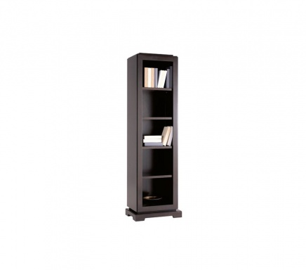 Bookcase Downtown