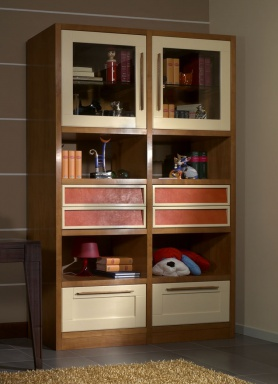 The bookcase in the nursery